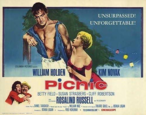 Amazon.com: Movie Posters Picnic - 27 x 40: Posters & Prints