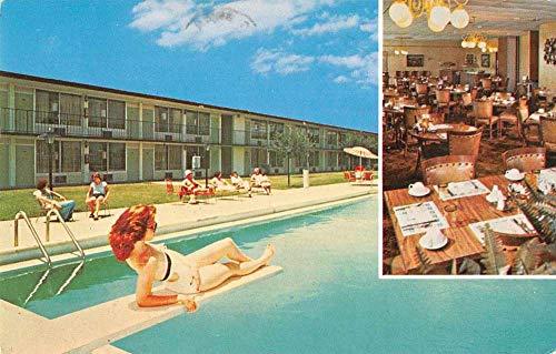 Yeehaw Junction Florida Holiday Inn Swimming Pool Vintage Postcard JA454474