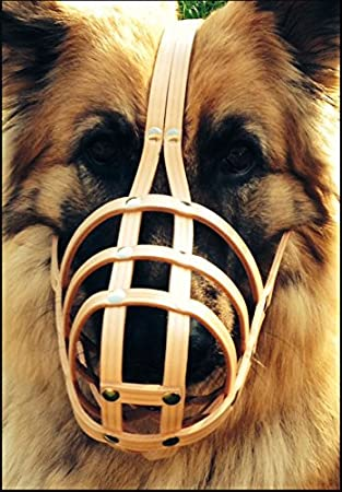 W1, Black Champion New Light leather Dog Muzzle Labrador and Other Similar Snout