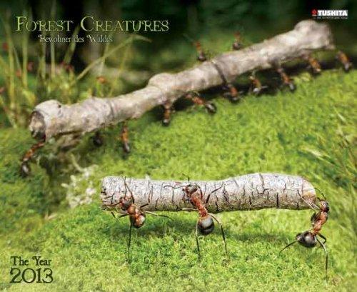 Forest Creatures 2013 Decor Calendar