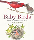 img - for Baby Birds: An Artist Looks into the Nest book / textbook / text book