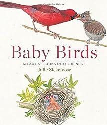 Baby Birds: An Artist Looks into the Nest