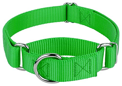 Image of Country Brook Design | 1 Inch Martingale Heavyduty Nylon Dog Collar - Hot Green - Medium