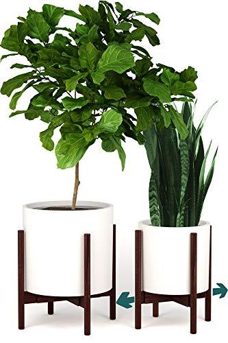 Fox & Fern Indoor Plant Stand - Adjustable Width 11 up to 15 - Dark Walnut - EXCLUDING Plant Pot