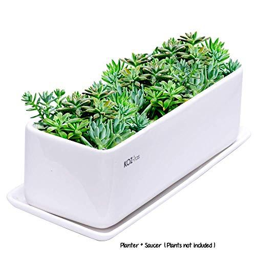 KOZitas 11.5 inch Minimalist Rectangle Planter, White Ceramic Succulent Planter Pots/Mini Flower Indoor Planter Terrarium with Draining Saucer. Window Box Apt for Cactus, Herbs, Plants and Flowers