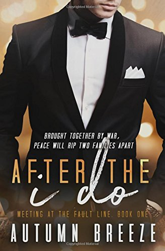 Download After The I Do (Meeting At The Fault Line) (Volume 1) pdf