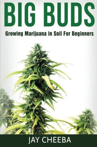 Growing-Marijuana-Big-Buds-Growing-Marijuana-In-Soil-For-Beginners-Growing-Marijuana-Marijuana-Cultivation-Marijuana-Growing-Medical-Marijuana-Marijuana-Horticulture