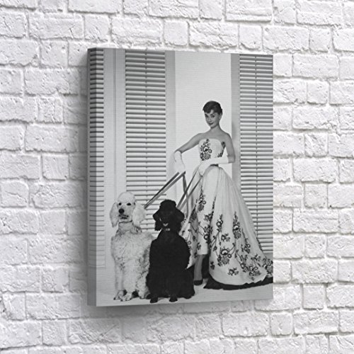 BUY4WALL Audrey Hepburn Wall Art Canvas Print with Two Big Poodle Dog Cute Photo Vintage Home Decor Framed Decorative Artwork - Ready to Hang - %100 Handmade in the USA - 40x30 (Dog Poodle Pictures)