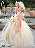 Beautiful Dream Princess Tutu Dress