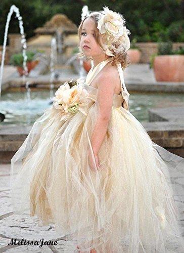 Beautiful Dream Princess Tutu Dress by MelissaJaneDesigns