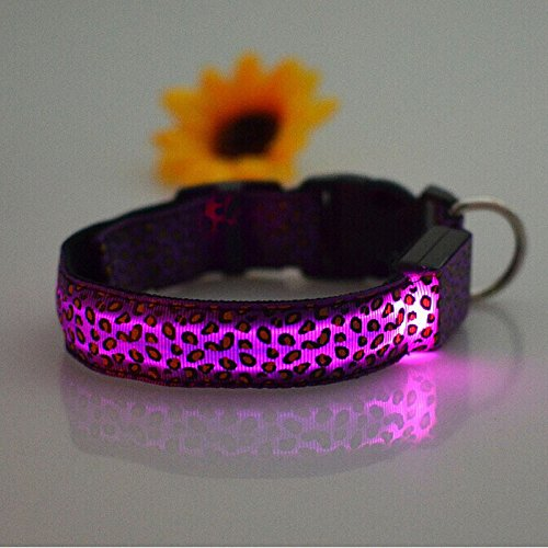 Pinleg Pets LED Dog Lights Leopard Flash Night Safety Waterproof Collar Makes Your Dog Visible Safe Seen 4 Colors Sizes (Purple, S)