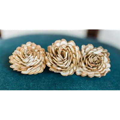 "Sola Wood Flowers - 1.5"" Almond (Pack of 10): Home & Kitchen"