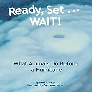 Ready, Set...WAIT! Audiobook