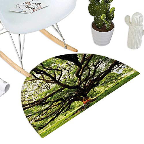 Nature Half Round Door mats The Largest Monkey Pod Tree in Thailand Eastern Green Big Branches Growth Eco Photo Bathroom Mat H 19.7