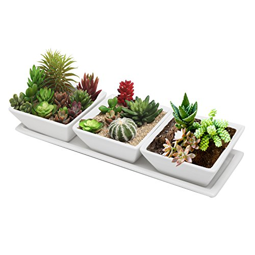 Three Square Planters - Set of 3 Decorative Modern Mini White Square Flower, Succulent Planters / Dishes with Display Tray