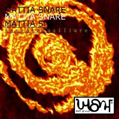 Amazon.com: Entrata ausiliare: Mattia Snare: MP3 Downloads