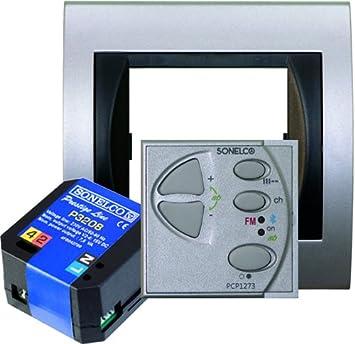 Sonelco PK0073-12 - Mando Amplificador de Sonido