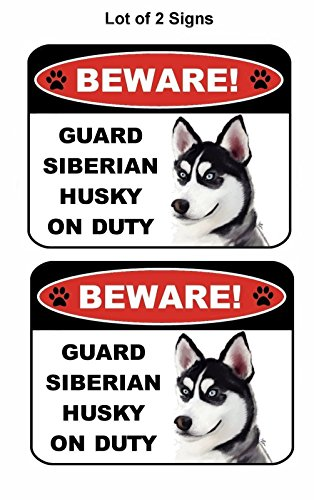 2 Count Beware Guard Siberian Husky on Duty (v1) 9 inch x 11.5 inch Laminated Dog Sign by PCSCP