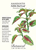 Edible Red Leaf Amaranth Seeds - .50 grams