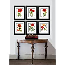 Red Poppy Kitchen Decor