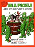 In a Pickle, Marvin Terban, 0899191649