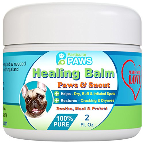Skin Care For Dogs Home Remedies - 7