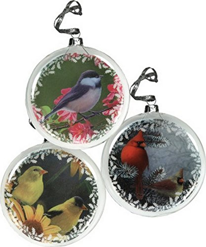 Rivers Edge Glass Bird Ornaments (Ornament Crest Christmas)