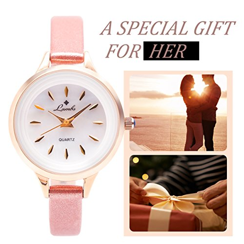 Ladies Watches,Lambo Waterproof Casual Fashion Watches for Women,Wrist Watches Easy to Read Times Leather Band Strap Girls Watch(Pink)