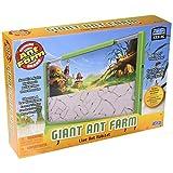 Uncle Milton Giant Ant Farm Kit