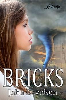 Bricks by [Davidson, John]