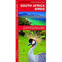 South Africa Birds: A Folding Pocket Guide to Familiar Species in the South African Region