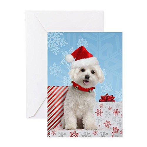 (CafePress - Maltese Christmas Card - Greeting Card, Note Card, Birthday Card, Blank Inside Matte)