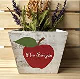 Personalized Teacher Gift, Apple Planter