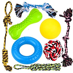 Youngever 8 Durable Dog Chew Toys – Puppy Toys – Value Pack – for Small and Medium Dogs – 3 Puppy Teething Toys 100% Natural Rubber (Dog Ring, Dog Bone, Dog Ball) -5 Dog Ropes Toys