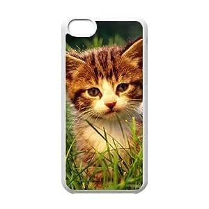Kitten Case For iPhone 5C White Nuktoe260396