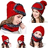 Lowpricenice DaySeventh Unisex Multi-Function Winter Warm Plus Velvet Knit Slouchy Masks Hats Collar