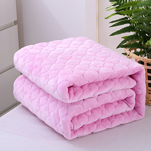 new Double thickZnzbztFlannel blanket thick warm single coral plush cotton blanket alone folders winter Double Double anti-slip, double bed 200x220cm, clip cotton - Pink