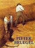 img - for Pieter Bruegel book / textbook / text book