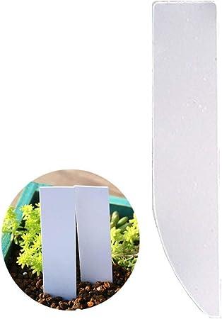 Csheng Etiquetas para Plantas Etiquetas de Plantas para macetas De Planta Etiquetas Jardín Etiqueta Etiquetas de Plantas para Plantas al Aire Libre White 2: Amazon.es: Hogar