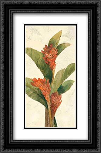 Ginger Blossom on White 2x Matted 16x24 Black Ornate Framed Art Print by Hristova, Albena White Ginger Matted Print