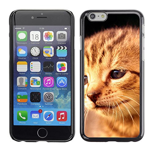 "Premio Sottile Slim Cassa Custodia Case Cover Shell // V00003785 visage chaton triste // Apple iPhone 6 6S 6G PLUS 5.5"""