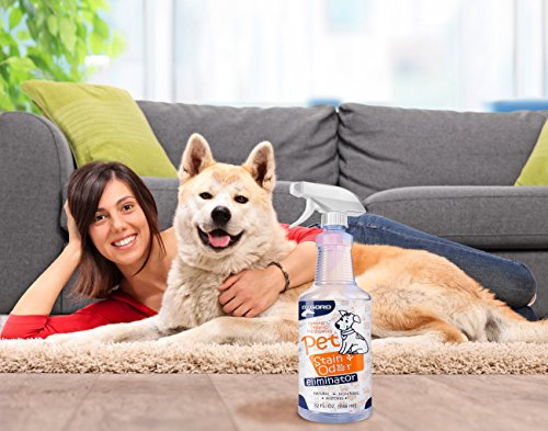 OxGord-Pet-Stain-Odor-Remover-Professional-Strength-Organic-Eliminator-Spray-32-oz-Enzyme-Eliminates-Cat-and-Dog-Urine-Pee-Stains-Deodorizer-Cleaner