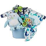 Baby Boy Gift Basket by Pellatt Cornucopia with Baby Boy Essentials