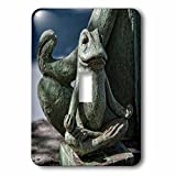 Roni Chastain Photography - Frog Meditation - Light Switch Covers - single toggle switch (lsp_239629_1)