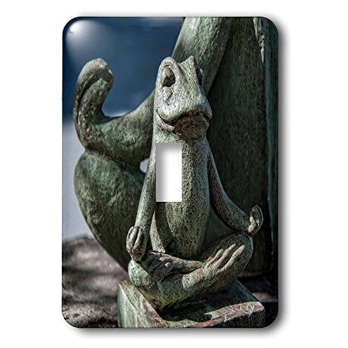 Roni Chastain Photography - Frog Meditation - Light Switch Covers - single toggle switch (lsp_239629_1) by 3dRose