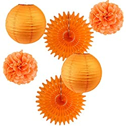 Tissue Paper Pom Poms Paper Fans Paper Lanterns Party Hanging Decoration Kit for Wedding Birthday Baby Shower Easy Joy (Orange)