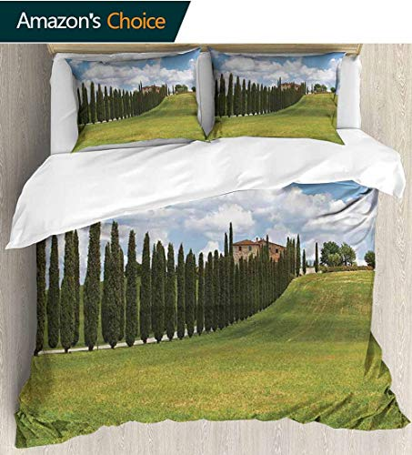 Tuscan Home Duvet Cover Set,Landscape Abandoned Farm House Vineyard on Hill Tall Trees Village Path Print Quilt Cover Set White Queen Pattern Bedding Collection 68