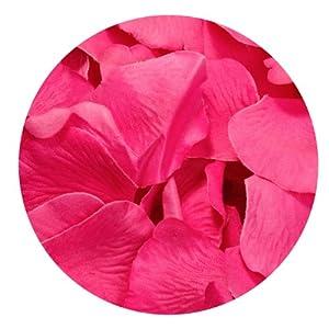 Koyal Wholesale 200-Pack Silk Rose Petals, Fuchsia 90