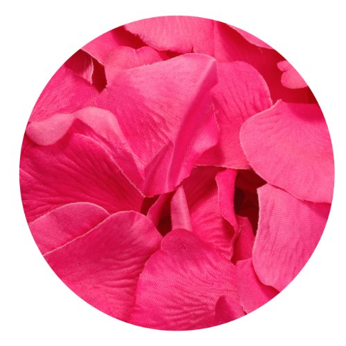 Koyal Wholesale 200-Pack Silk Rose Petals, Fuchsia