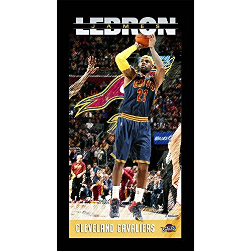 Cavaliers Framed Wall (Steiner Sports NBA Cleveland Cavaliers Lebron James Cleveland Cavaliers Player Profile Wall Art 9.5x19 Framed Photolebron James Cleveland Cavaliers Player Profile Wall Art 9.5x19 Framed Photo)